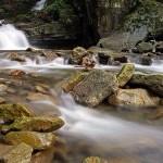 Tématem letošního ročníku Ekofilmu bude voda