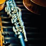 Jeden z nejvýznamnějších cimbalistů světa MARIUS PREDA přijede na festival MUSICA PURA