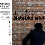 """Umělec Jiří Žák vystaví v galerii Lauby """"esejistické video"""" o Baťovi"""