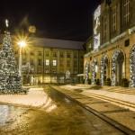 Rozsvícení vánočního stromu před Novou radnicí