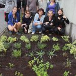 Přijďte s námi vysadit bylinkovou zahrádku po vzoru klášterních zahrad